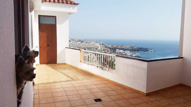 appartement los gigantes tenerife Atlantic Properties 29 9 2017 20 25 53