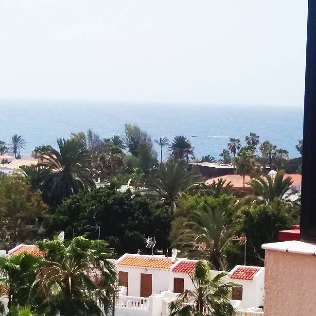 location studio completement neuf a playa de las Americas Atlantic Properties 10 4 2018 15 40 47